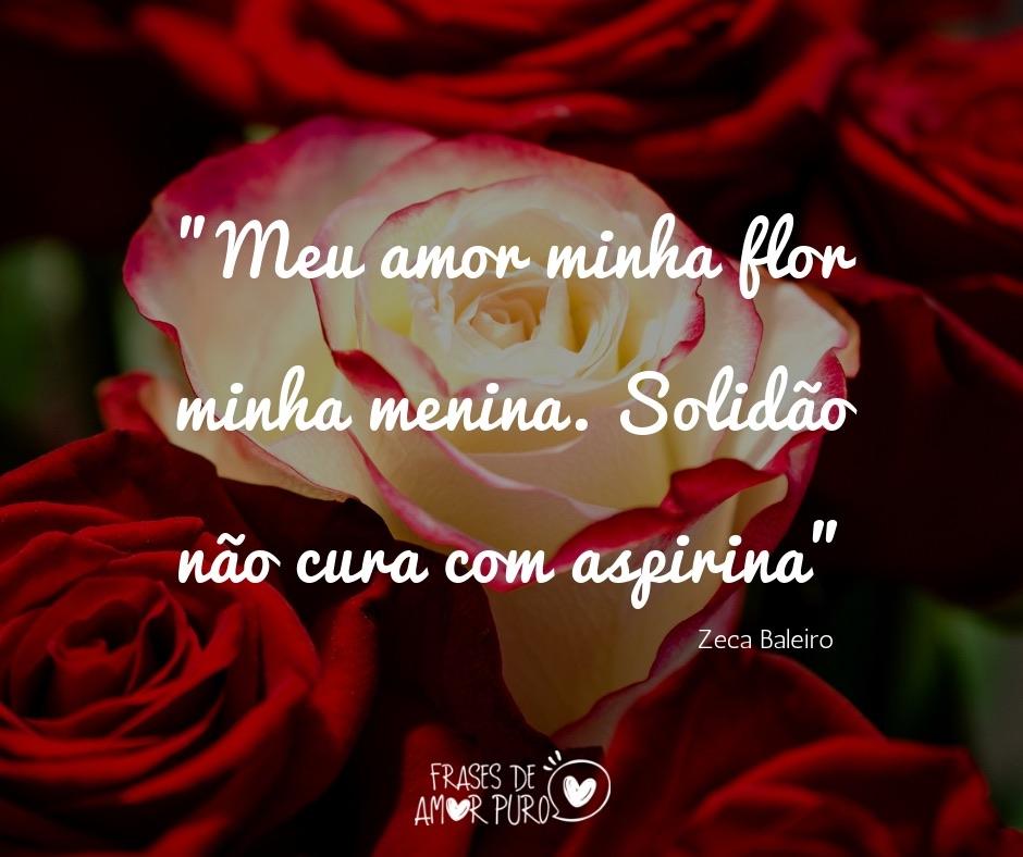 Meu Amor Minha Flor Minha Menina Frases De Amor Puro